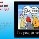Слышал звон, да не знает где он: одному Андрею Тенишеву не следует подставлять целую службу