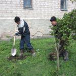 Жителей Хакасии, ищущих работу, привлекают к общественным работам