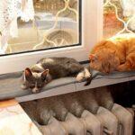 Тепло в жилых домах Абакана появится 22 сентября